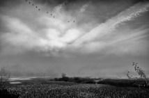 autumn morning, kilobuck marsh