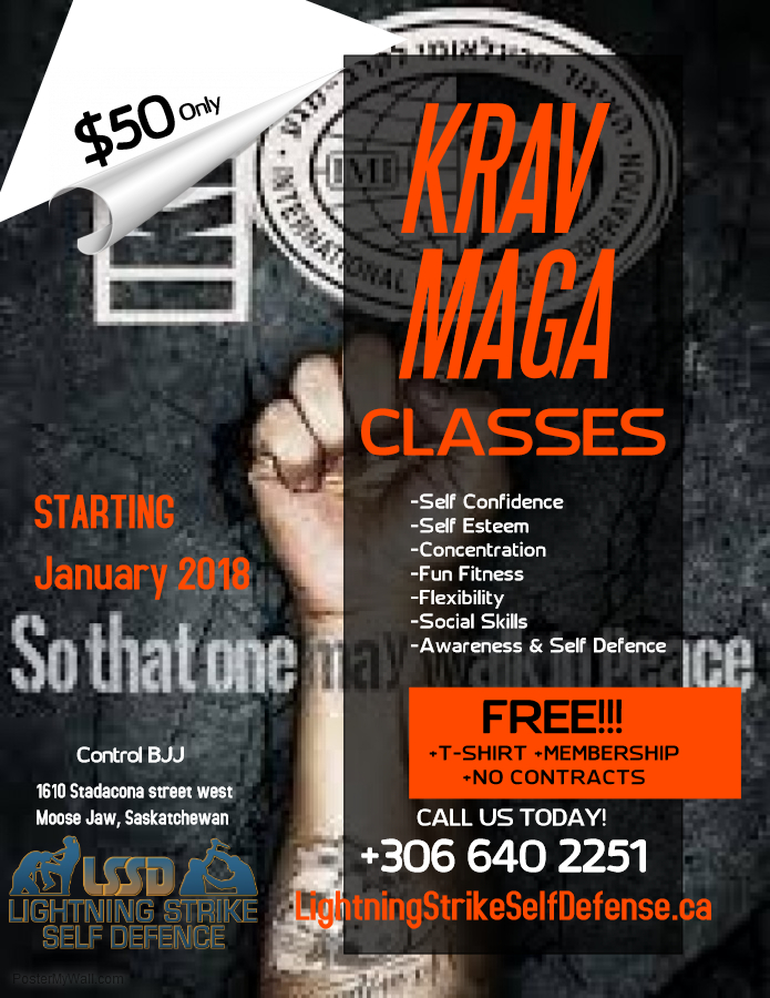 Copy of Martial Art Classes Flyer