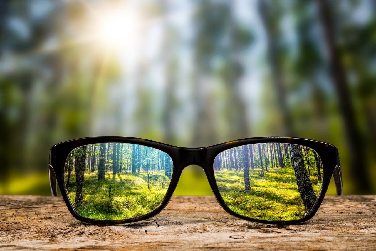 Mindset, Lens, Focus and Organizational Change — David Jakes Designs