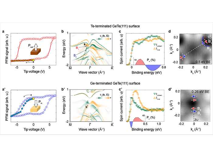 Ferroelectric control of the spin texture in GeTe