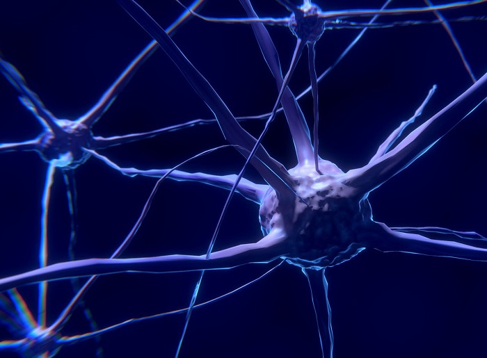 A step closer to early detection of multiple sclerosis