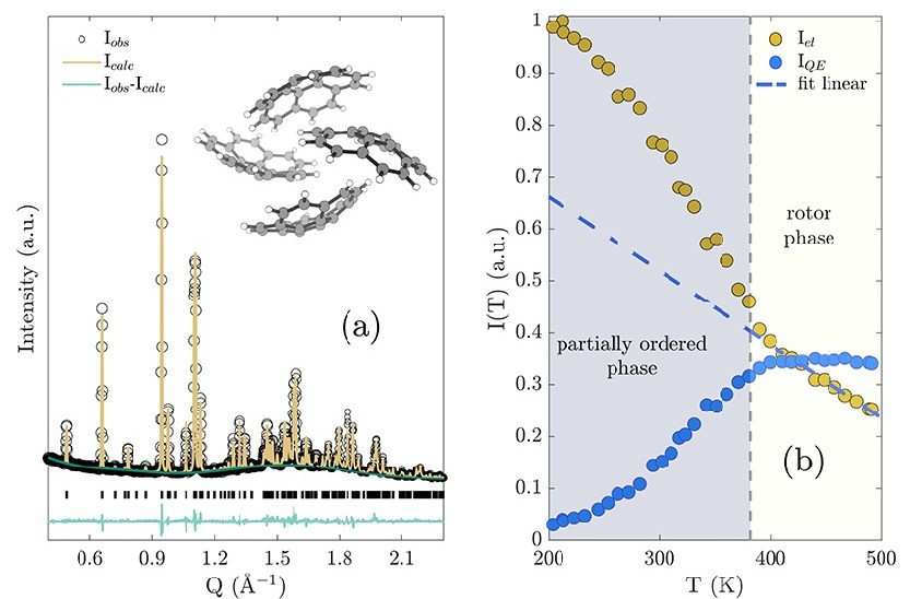 Activation of order-disorder dynamics in crystalline Buckybowls