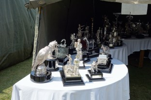 RLC Officers Mess Silver on display at 2013 RLC Open Day