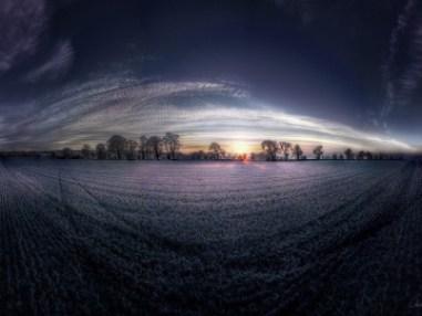 winterfield50