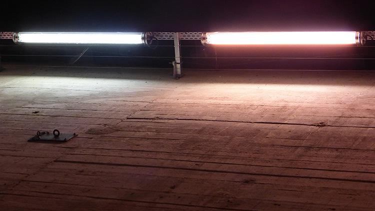 Mise-en-lumiere-Virginie-Voue,-Luminescence--Base-sous-marine,-St-Nazaire--Photo-Vincent-Laganier (8)