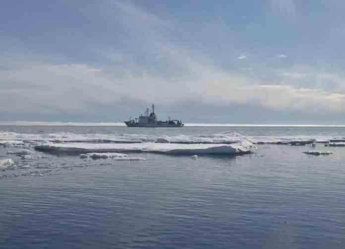 alliance marina militare