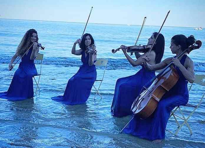 Alter Echo String Quartet