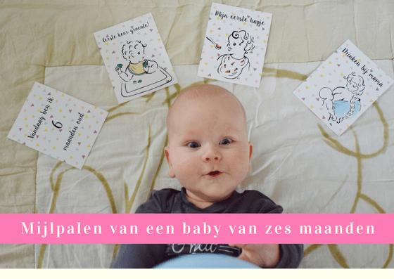 Mijlpalen van een baby van zes maanden