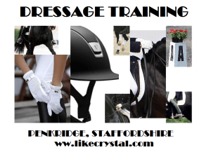Dressage Training Penkridge