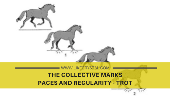 COLLECTIVE MARKS – PACES AND REGULARITY – TROT