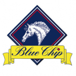 Blue Chip Feeds