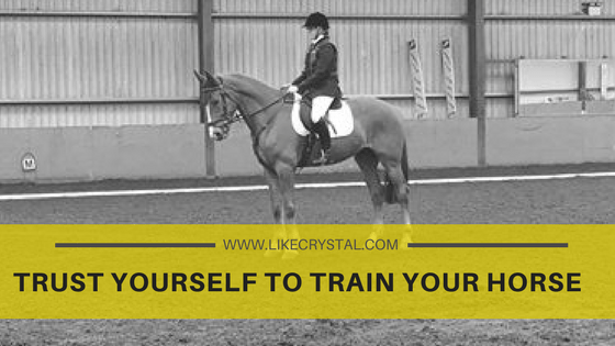 Trust Yourself To Train Your Horse