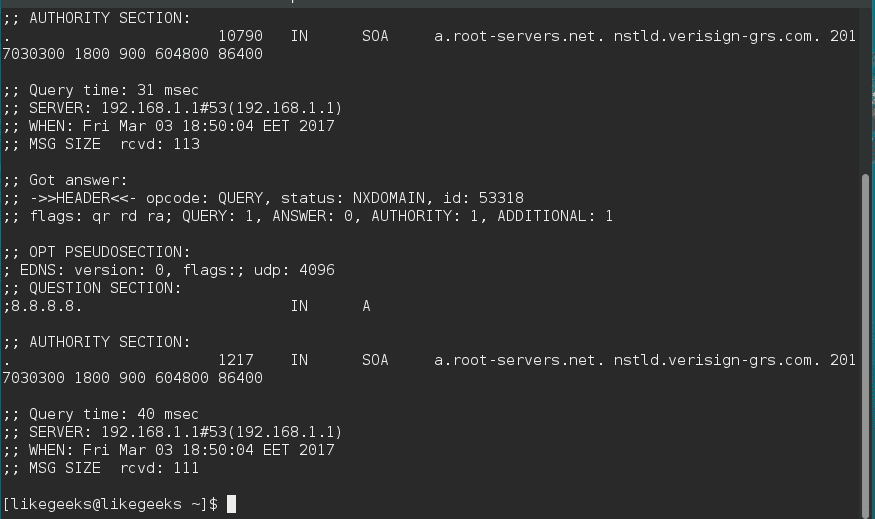 dig -x linux network commands