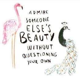 bird quote