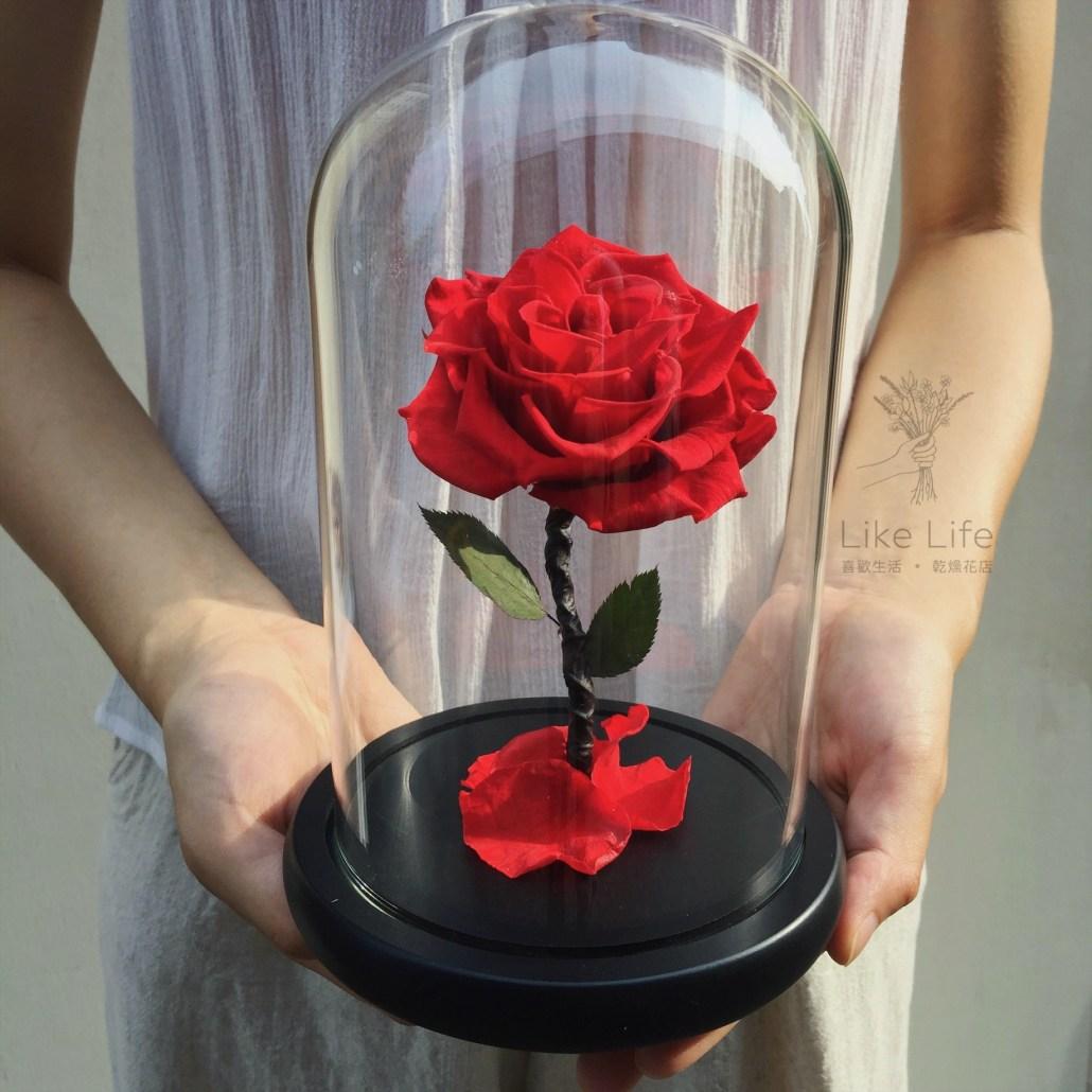 永生玫瑰花玻璃罩雙手封面,永生玫瑰花台北喜歡生活乾燥花店