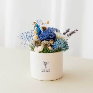 乾燥花盆栽中型藍色首圖,乾燥花盆栽推薦台北