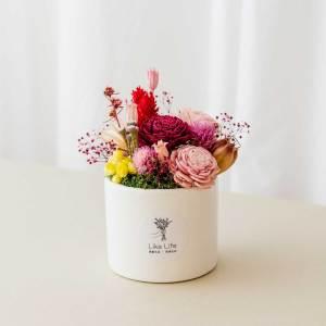 乾燥花盆栽中型紅色首圖,乾燥花盆栽推薦台北