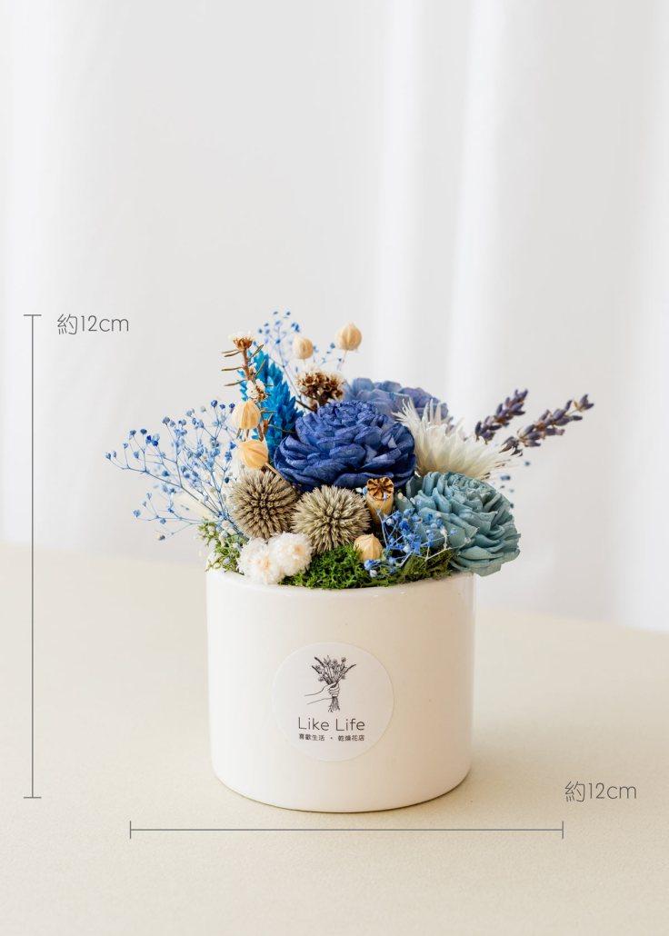 乾燥花開幕盆栽,乾燥花中型開幕盆栽藍色乾燥花開幕盆栽