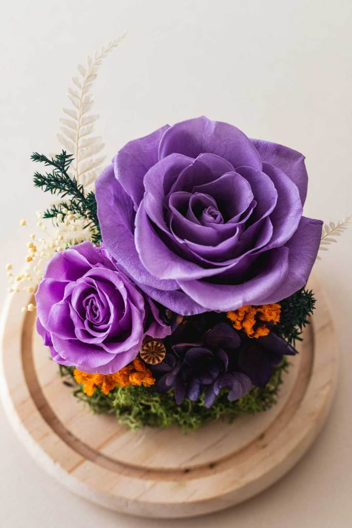 永生花玻璃盅罩-永生花紫(近2)