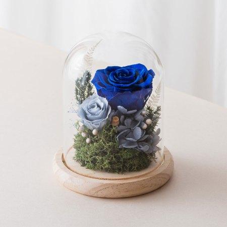 永生花玻璃鐘罩-深藍色永生花封面