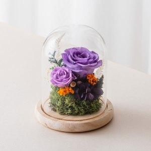 永生花玻璃鐘罩-紫色永生花封面