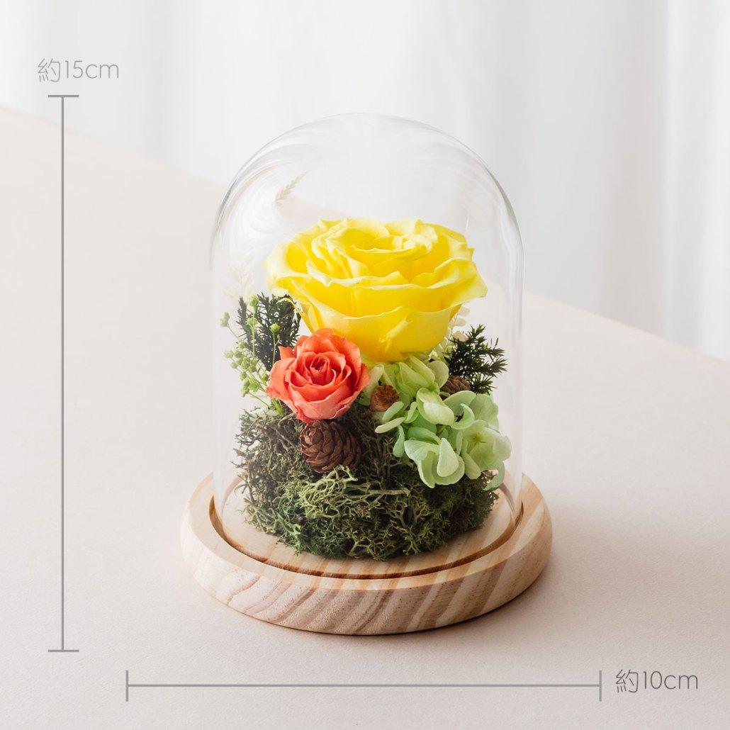 永生花玻璃鐘罩-黃色尺寸照片