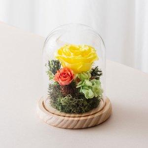 永生花玻璃鐘罩-黃色永生花封面