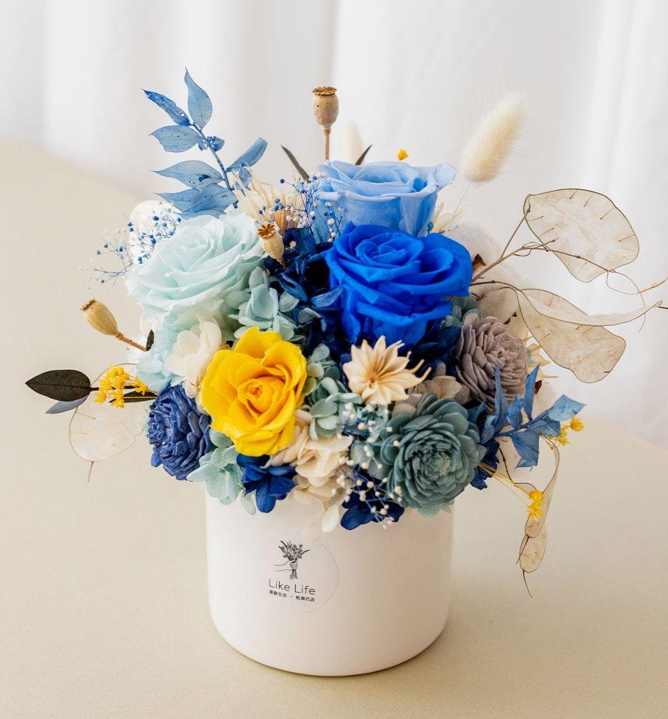 永生花盆栽藍色側面,永生花盆栽推薦台北