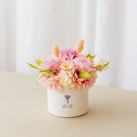 永生花盆栽中型粉色首圖,永生花盆栽推薦台北