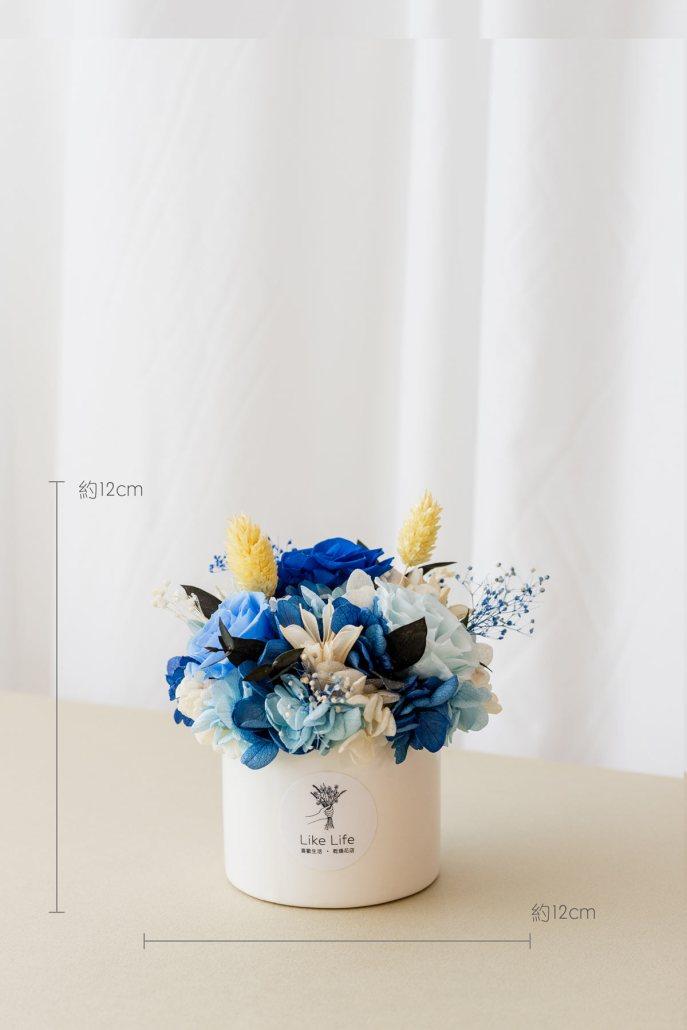 永生花盆栽-中型永生花盆栽藍色開幕盆栽