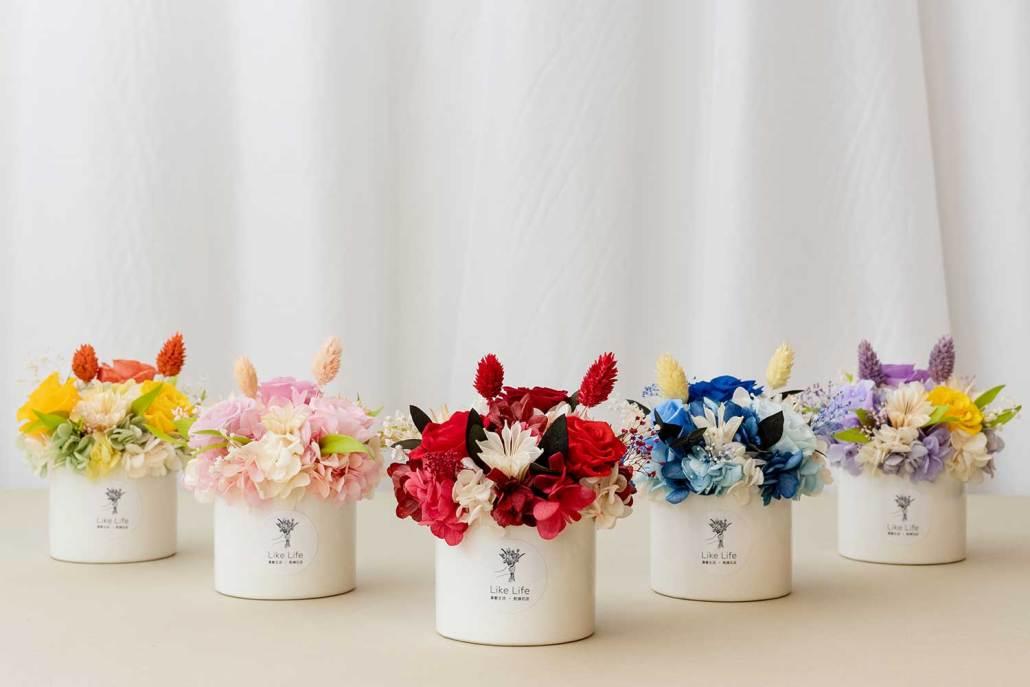 母親節永生花盆花,母親節康乃馨盆栽
