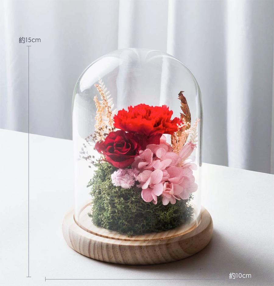 母親節永生花康乃馨紅色公分-台北喜歡生活乾燥花店