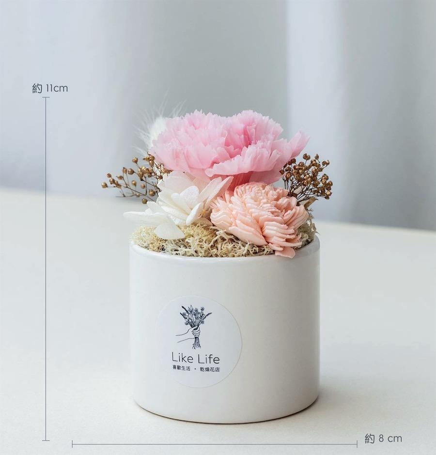 母親節粉色永生花康乃馨盆栽公分-台北喜歡生活乾燥花店