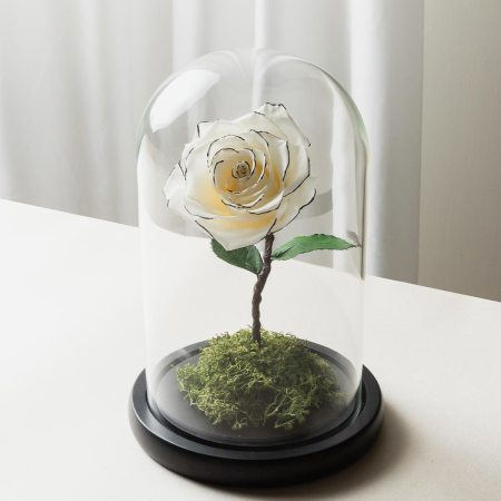 白黑色永生玫瑰花玻璃罩封面-喜歡生活乾燥花店