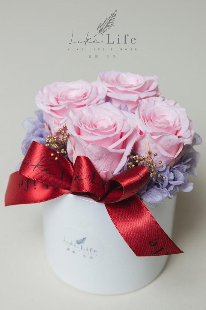母親節永生玫瑰花盆栽粉色永生玫瑰花封面