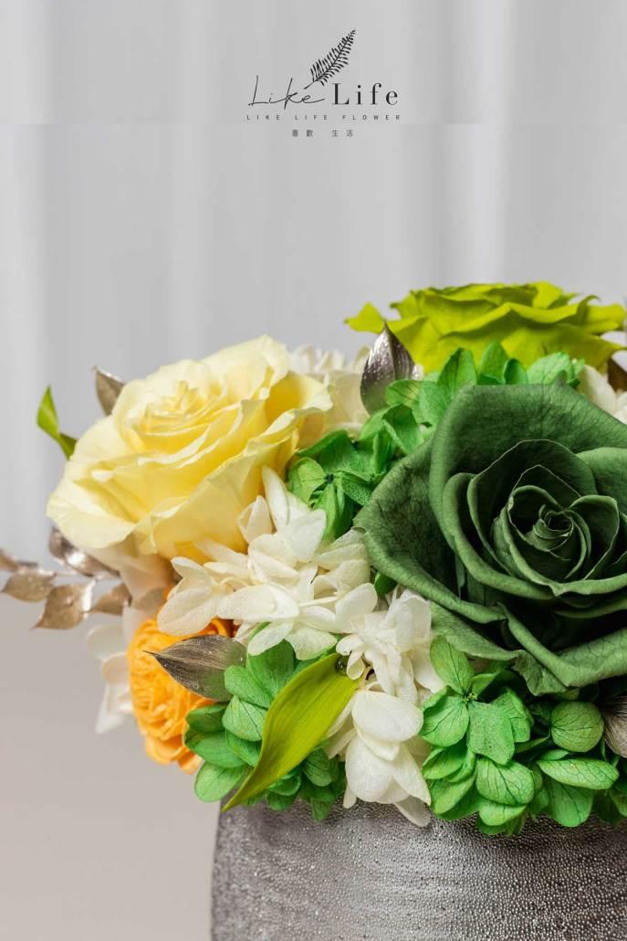 開幕盆栽永生花綠色特寫照銀盆盆栽,永生花開幕盆栽