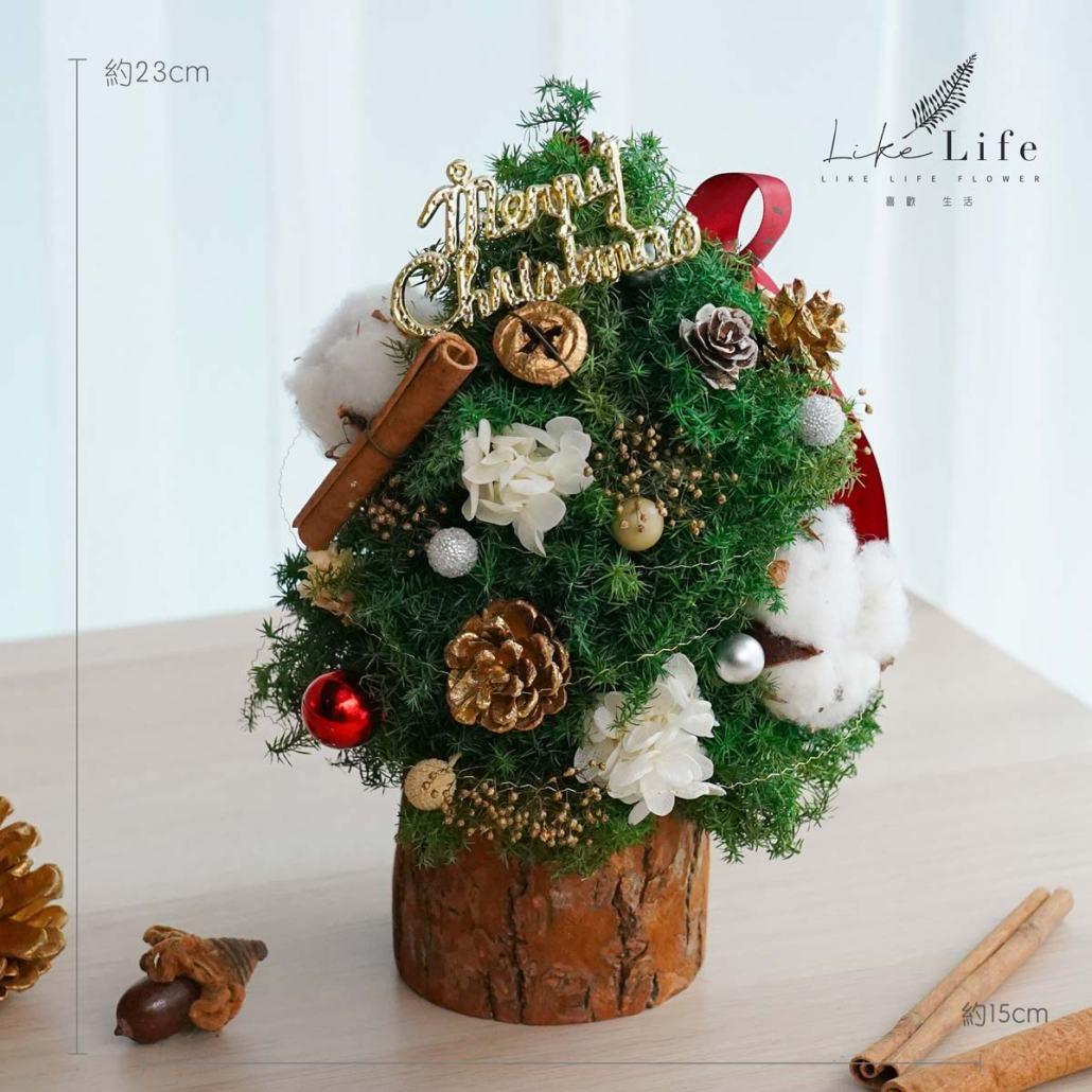 聖誕樹木底公分