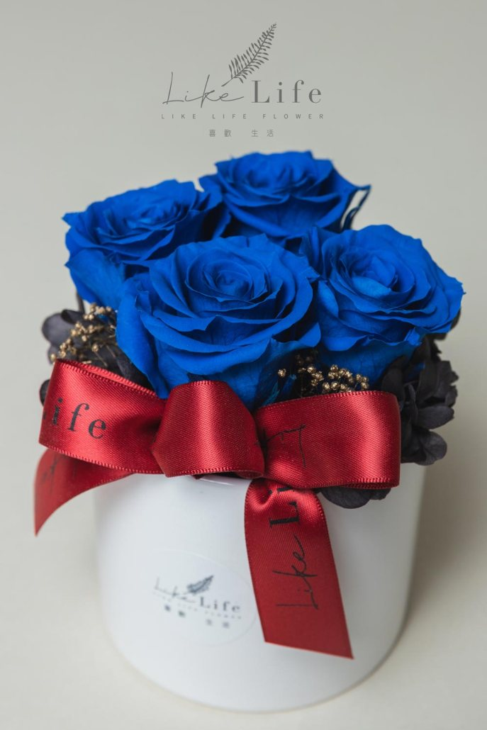 開幕盆栽永生玫瑰花盆栽特寫藍色永生玫瑰花開幕盆花