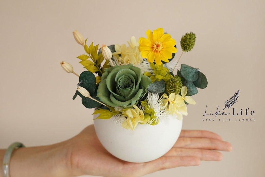 永生花盆栽手拿特寫,綠色永生花,台北喜歡生活乾燥花店
