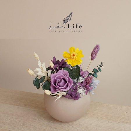 永生花盆栽紫色封面小