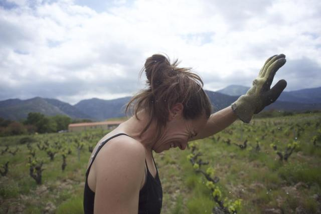 women-with-green-glove-in-vineyard-in-france