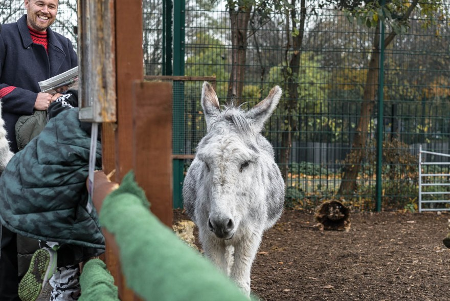 man with stripey red top blue jacket smiling at white donkey in spitalfields city farm,