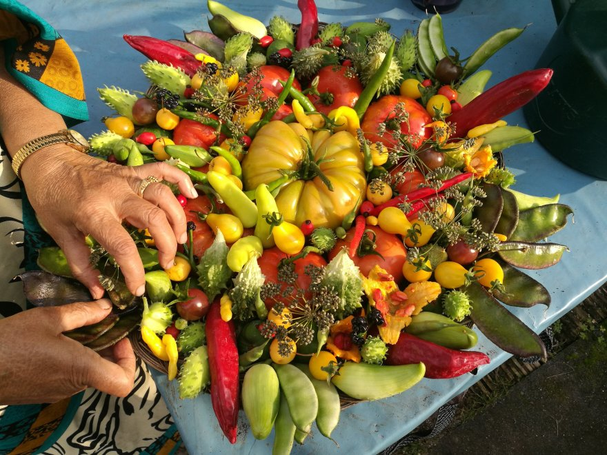 basket of vegetables filled with red tomatoes green chillies green peas flowers and other fruit