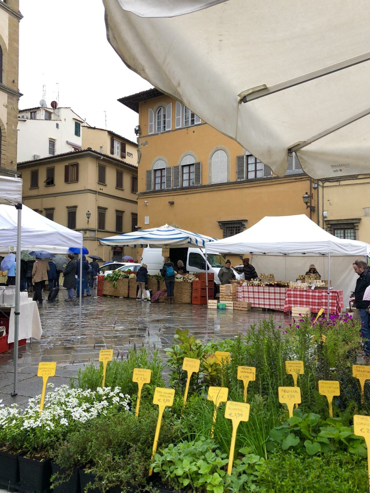 Day trip Gelato making in florence with Livitaly organic food market