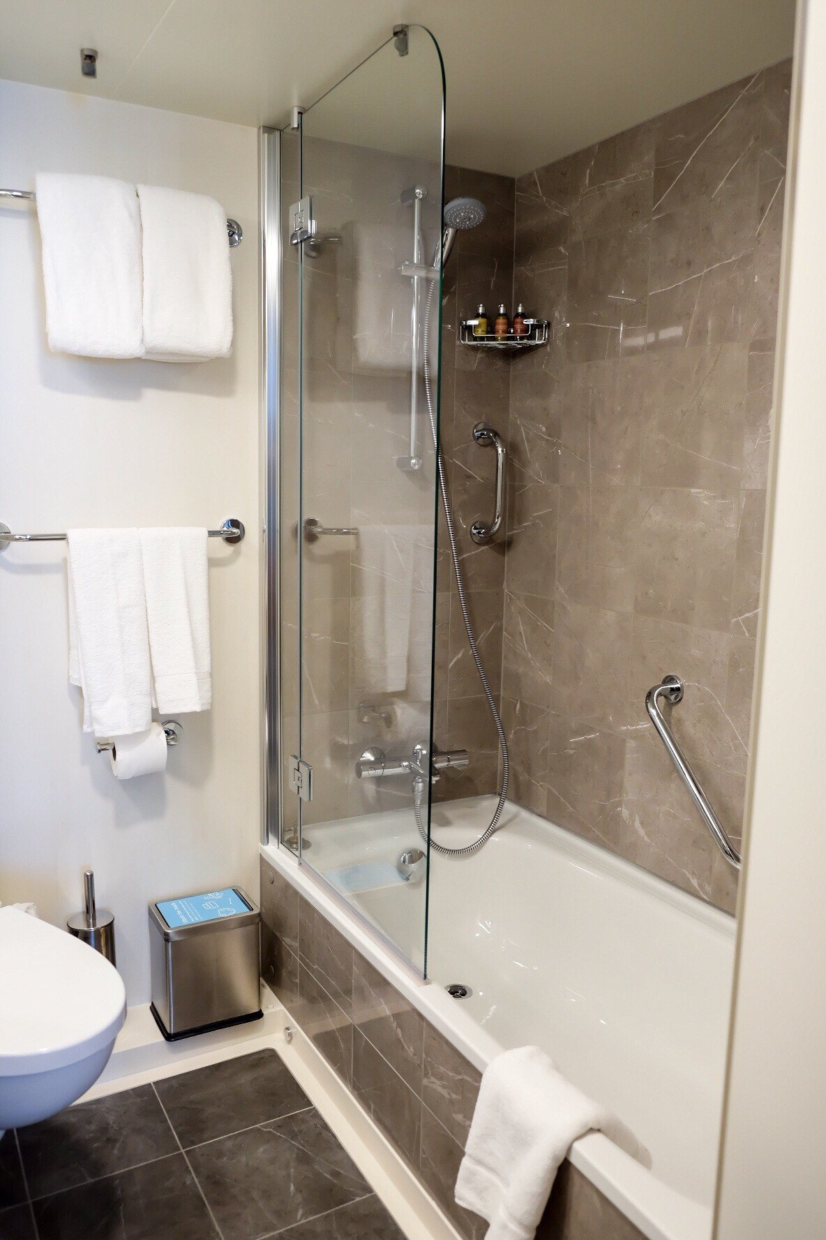 Grande suite stateroom bathroom with bath and shower