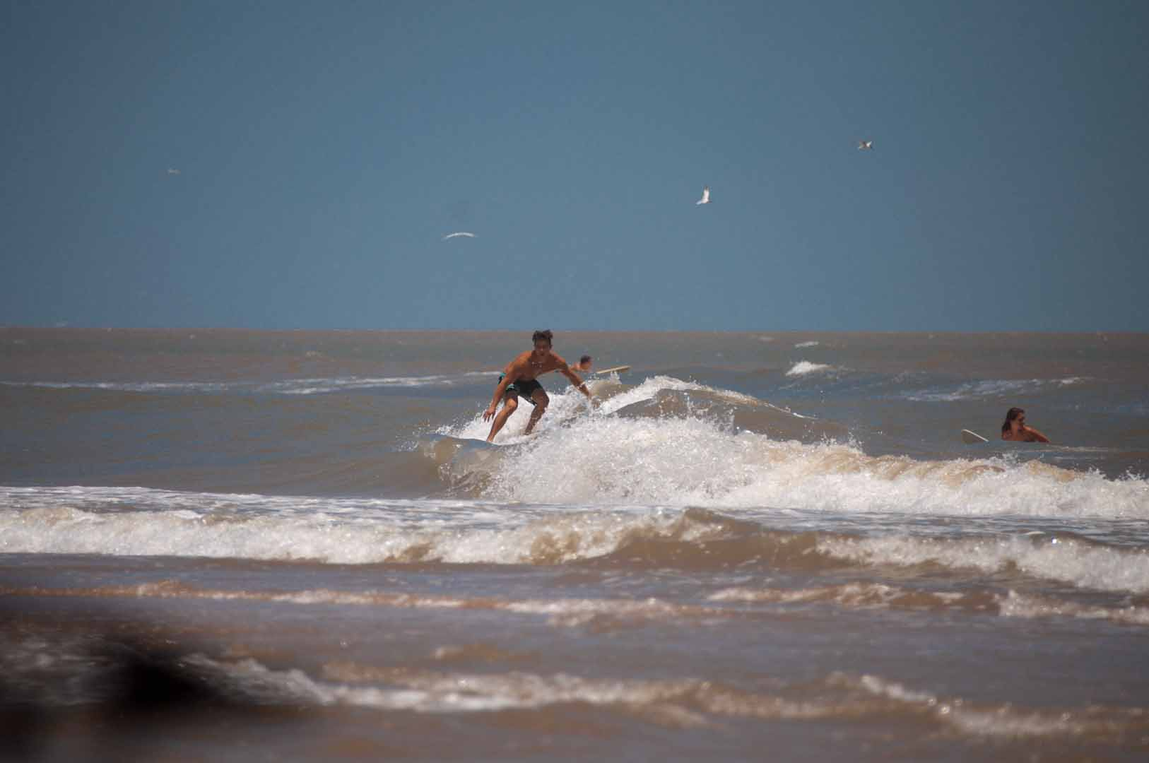 SurfsideLateJune_20150627_394