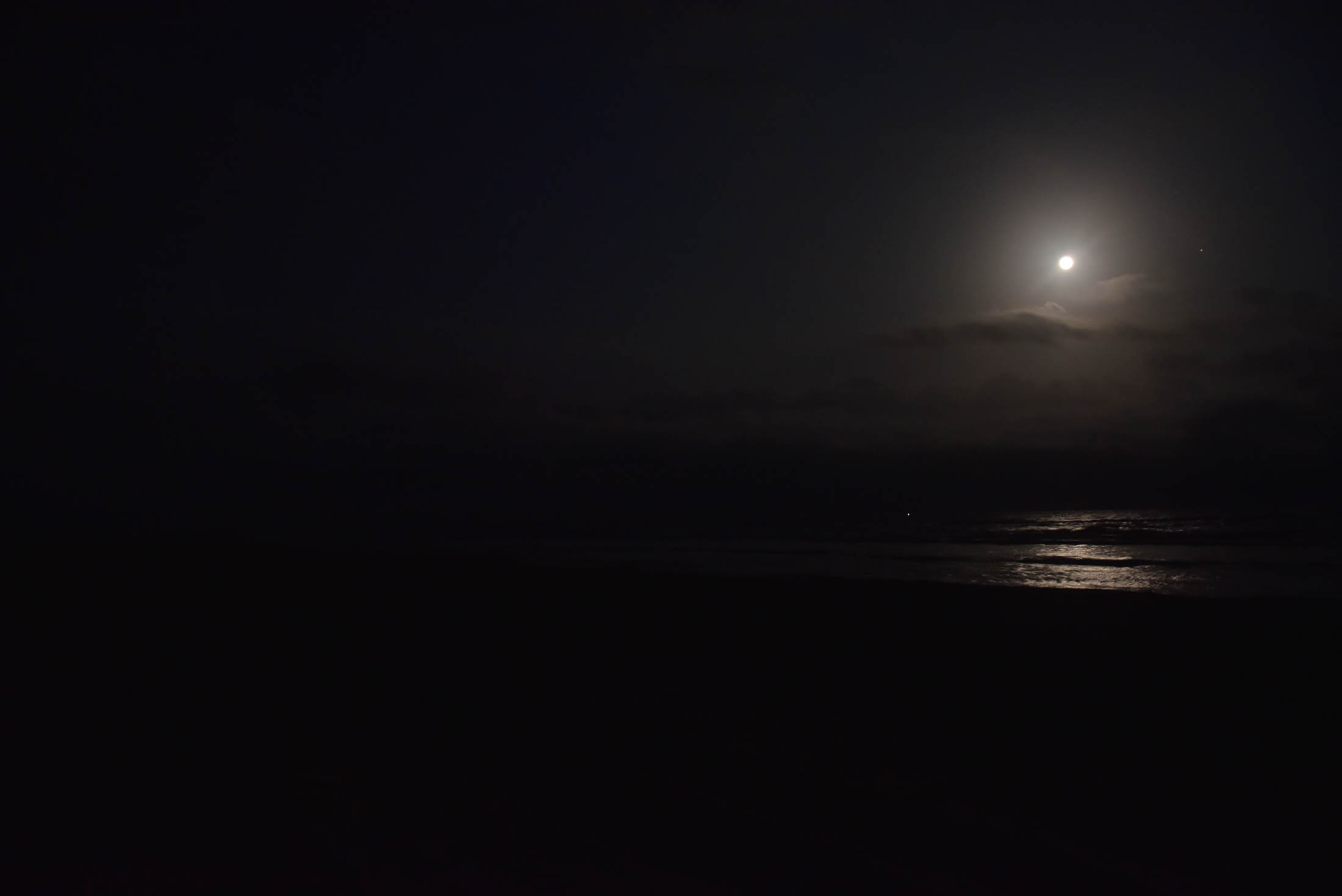 shoreline after dark