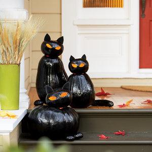 black cat o'lantern