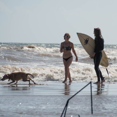Matagorda Surfing Day Trip