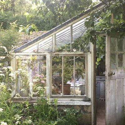 greenhouse mood board